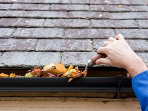Cleaning Leaves Out of Gutter