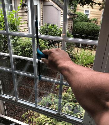 Window Getting Cleaned