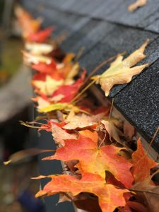 Leaf Gutter Cleaning Before