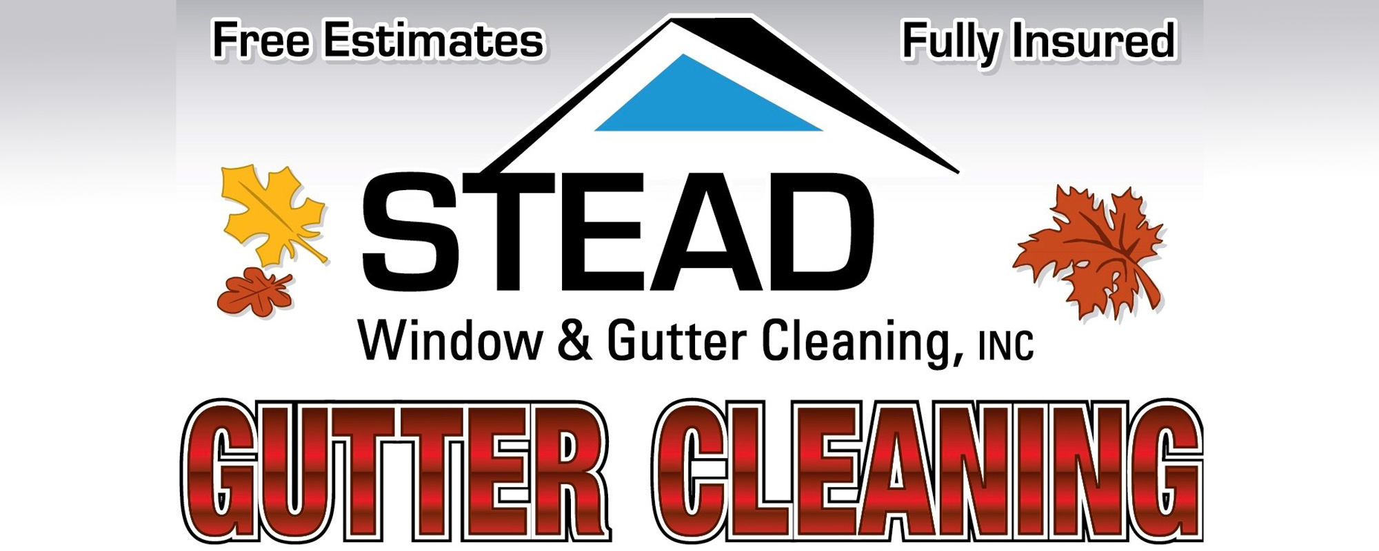 Stead Window & Gutter Cleaning