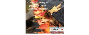 Stead Window and Gutter Cleaning, INC
