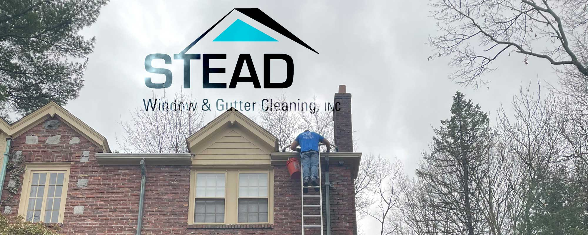 Stead Window Cleaning